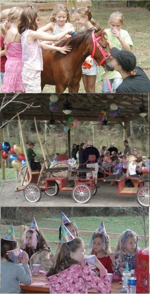Children Birthday Parties Knoxville TN